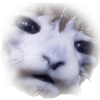 dobrapozitiva's avatar