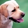 Dog-Paw's avatar