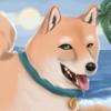 Doge's avatar