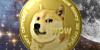 DogeCoins's avatar
