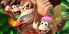 Donkey-Kong-FanClub's avatar