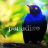 DoserQH's avatar