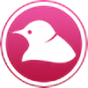 DoveStation's avatar
