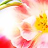draconis393's avatar