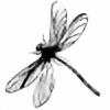 Dragonflysunning's avatar