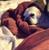 DragonGscales2015's avatar