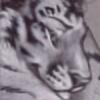 Dragonlord-Gali's avatar