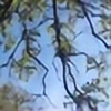 dragons-charm's avatar