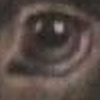 DrawingMaster1's avatar
