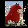 Drayni's avatar