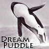 dream-puddle's avatar