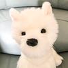 DreamcatcherPlush's avatar