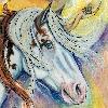DreamingofDarkhorses's avatar
