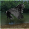 Dressage-Queen's avatar
