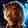 drewkay's avatar