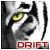 DriftingSteps's avatar