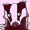 DrStoat10's avatar