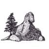 DrTheropod's avatar