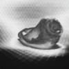druinfly's avatar