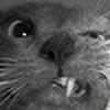 drumb's avatar
