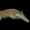 dttb6296's avatar