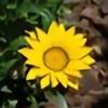 Duarib's avatar