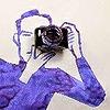 dubcount's avatar