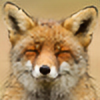 Dudebaker's avatar