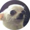 DudeDrawsForFun's avatar