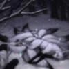 DuskSoulKitsune's avatar