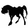Dwelian's avatar