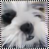 e-hoshi's avatar