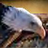 EagleAerie's avatar
