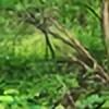 eaglegreyowlwolf94's avatar