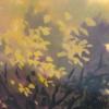 eamnresu's avatar
