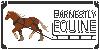 EarnestlyEquine