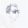 ebsastronut's avatar