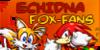 Echidna-fox-fans