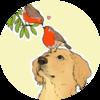 echoeo's avatar