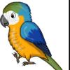 echolore's avatar