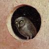 ecstasyheart's avatar