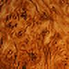 edgarallanho's avatar