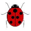 edhelbeleth's avatar