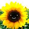 Eemiime's avatar