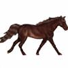 EerieWonders's avatar