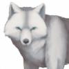 eien8212's avatar