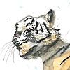 Ekaaan's avatar