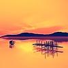 ekramy's avatar
