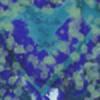 elaina98star's avatar