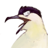 Eldritch-Skua's avatar